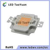 O diodo emissor de luz cresce a microplaqueta clara 380-840nm cresce a lâmpada 10-100W