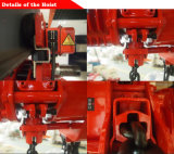Equipo de elevación del cargo alzamiento de cadena de 25 toneladas con velocidad dual
