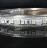 5050 veränderbarer LED Streifen 50m/Roll RGB-R/G/B/W/Y/Ww mit LED-Controller