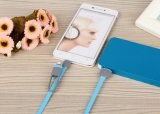 Chargeing Kabel-Vorlage für iPhone Daten-Kabel 2 in 1