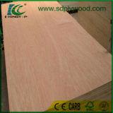 madeira compensada do Poplar de 5mm/12mm/madeira compensada do vidoeiro com o Carb2 para USA/Canada