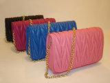 Disegni di superficie ricamati dei sacchetti di Totes per le donne di lusso