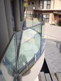 Het populaire Traliewerk van het Glas Frameless met Spon