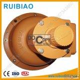 Dispositivo di sicurezza della gru della costruzione del pignone e della cremagliera (SRIBS)