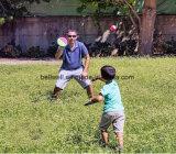 Toss игрушек хода и задвижки установленный & шарик задвижки с затвором диска