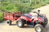 Beach ATV 125cc Electric Car for Farm