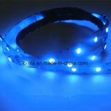 IP65 a prueba de agua 60LEDs / M LED Strip