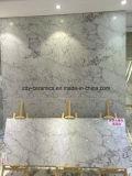 Mattonelle di pavimento bianche della pietra del Grado-Marmo delle mattonelle 80X80 della porcellana del materiale da costruzione