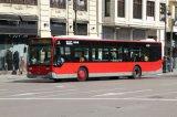 Het hoge LEIDENE van de Bus van de Helderheid Teken van de Vertoning met het Scrollen Messege