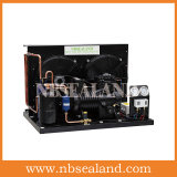 Abrir-Tipo unidade de condensação de Zb