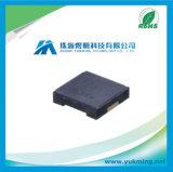 Circuit intégré Pklcs1212e4001 du gestionnaire externe IC