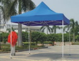 Gazebo portatile commerciale del metallo di 10X10FT