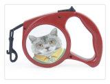 Hot Sale New Dog Dog Leashes, laisse de chien rétractable