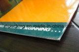 Impermeabilizar/hoja hueco plástica acanalada los PP reutilizable de la hoja/PP de la hoja/PP Coroplast para la señalización/la corona de la impresión tratadas