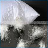 100%年の綿の熱い販売の枕挿入を満たす流し込まれた羽