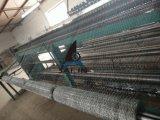 Sailin Kurbelgehäuse-Belüftung beschichteter sechseckiger Huhn-Maschendraht für Garten und Bauernhof