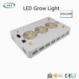 200PCS*10W hoge leiden van Lumen groeien Licht voor BinnenInstallatie