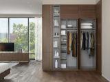 Wardrobe com mobília da HOME da caixa de armazenamento