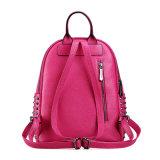 Pink Color (6135)の流行のLadyのBackpack