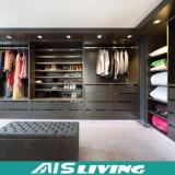 조립하십시오 열려있는 선반 옷장 옷장 가구 (AIS-W052)를