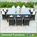 Tabella e presidenze della mobilia del giardino di 10 Seaters