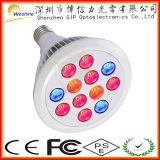 초능력 24W Chloroba2 LED는 가득 차있는 스펙트럼에 가볍게 증가한다