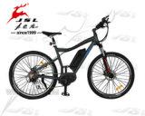 """2016 Fahrrad der heißer Verkauf 26 """" 36V Li Ionenbatterie-E mit Cer (JSL-035G)"""