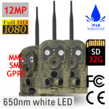 650nm G/M MMS Jagd-Kamera-Hinterkamera für Jagd-Überwachungskamera