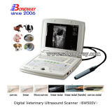 Le vétérinaire d'insémination artificielle usine le scanner d'ultrason