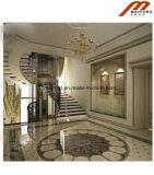 Лифт безопасности домашний для панорамного подъема
