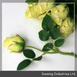 Arbustos artificiais coloridos da flor de Rosa do toque real da venda direta da fábrica