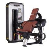 体操装置の二頭筋のカールの体操機械