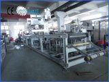 Machine de conditionnement de Thermoforming de vide
