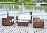 El sofá al aire libre del patio fija la rota/los muebles del jardín