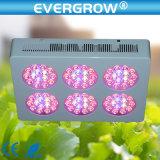 Indoor Plants를 위한 400W LED Grow Lights
