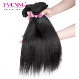 Tessuto indiano grezzo dei capelli del Virgin dei capelli di Yvonne