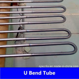 Steel di acciaio inossidabile U Bend Tube in Seamless