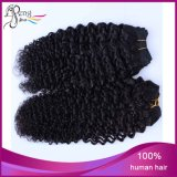 モンゴルのバージンのRemyの加工されていない絹の直毛のよこ糸
