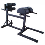 Equipamento de GHD/Fitness/cadeira de Roma/colaborador comerciais do presunto de Glute equipamento da ginástica