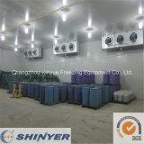 Kalter Lagerraum für Chemical Raw Material