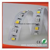 SMD5050 360LEDs RGB 온난한 백색 순수한 백색 5 색깔 LED 지구 빛
