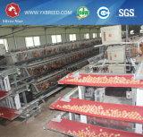 Тип 3 клетки фермы автошин для 20000 куриц для делает яичка (A-3L90)
