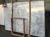 Mármol gris de Praga del origen de piedra chino de las losas para el revestimiento del suelo/de la pared