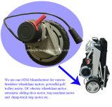 24V 300W 160rpm Eletrice Motor de tracción y el motor de la CC Transeje eléctrico Sightseeing coche y carro de golf