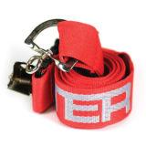 Impresión de seda cuerda de seguridad