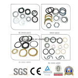 Heißes Sale Renault Oil Seal Ring Sealing Elements von 2010339722 5000576155 501055789