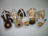 실생활 동물성 견면 벨벳 다람쥐에 의하여 채워지는 애완견 장난감