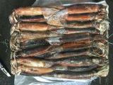 미끼를 위한 소형 어선 전염성이는 바다에 의하여 어는 오징어