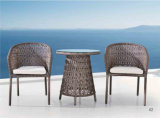 Présidence de rotin de meubles et Tableau de thé extérieurs