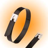 Dnv, l'ABS, UL a indiqué les serres-câble enduits d'époxyde d'acier inoxydable